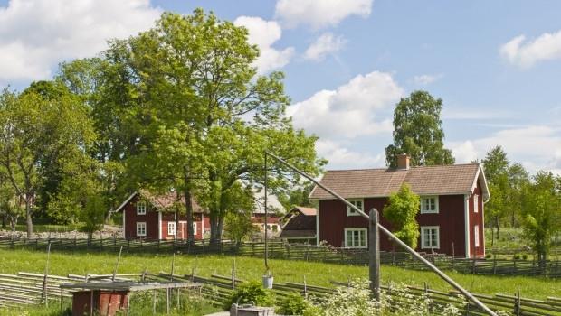 Countryside landscape - Idyllic farm in summer landscape